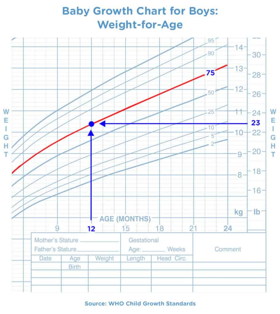 Baby Growth Chart for Boys-Weight for Age