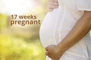 17 weeks pregnant