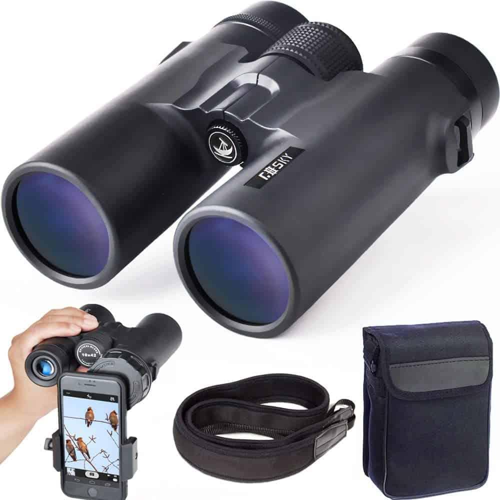Magnification binoculars with smartphone mount