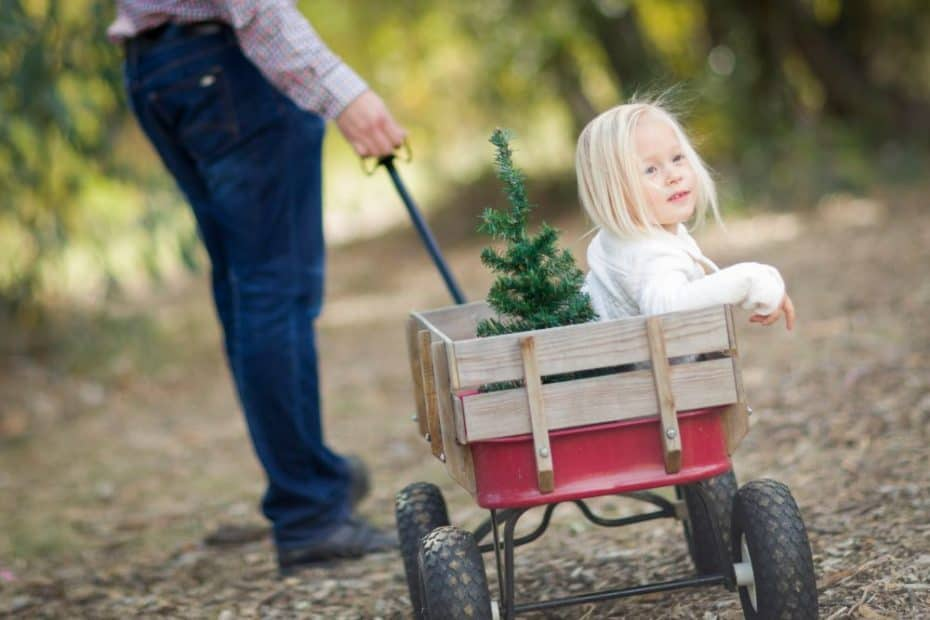 Top 7 Best Wagons for Babies and Toddlers Of 2021