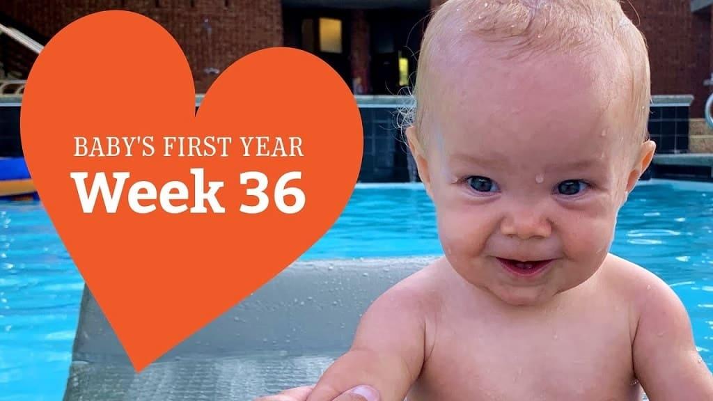 36-week-old baby