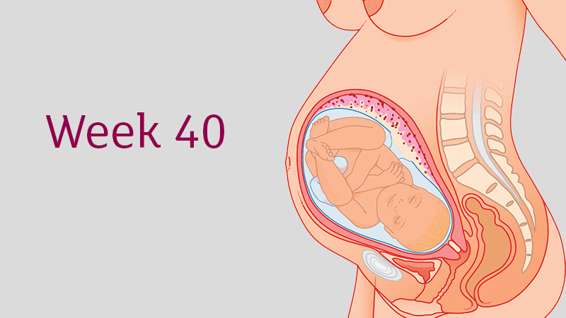 40 Weeks Pregnant