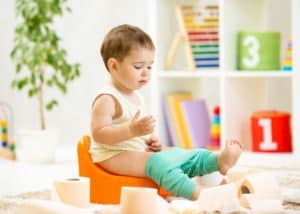 Top 7 Best Potty Chairs And Seats Of 2021